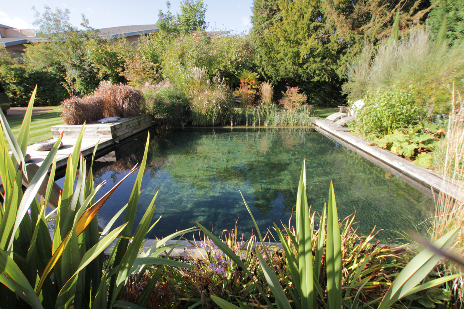 Top 10 Tips For Building An Affordable Diy Natural Pool Piping Layout Of Swimming Construction