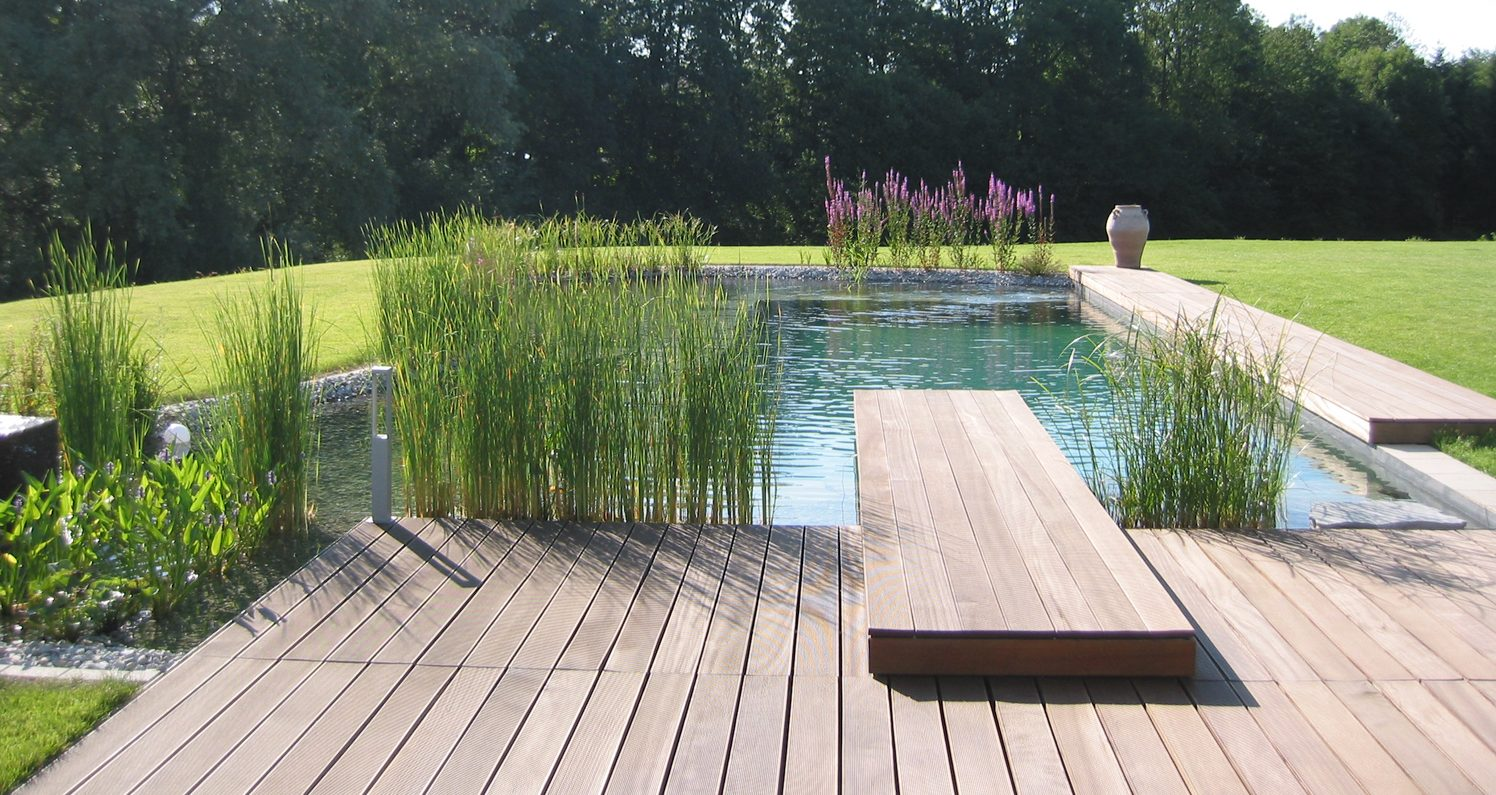 Five Reasons Your Garden Should Have A Natural Swimming Pool Cwr