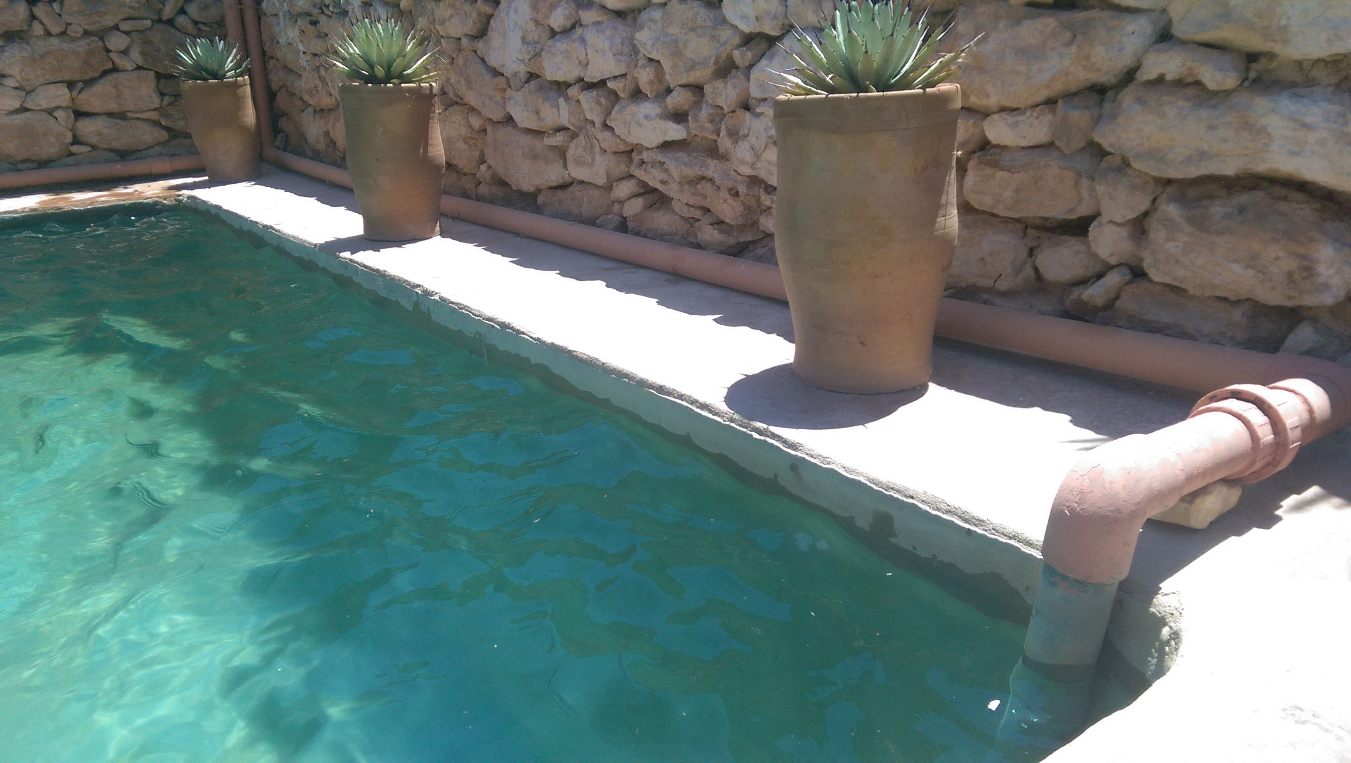 Keep The Design Simple When Building Your Own DIY Natural Swimming Pool Amazing Design