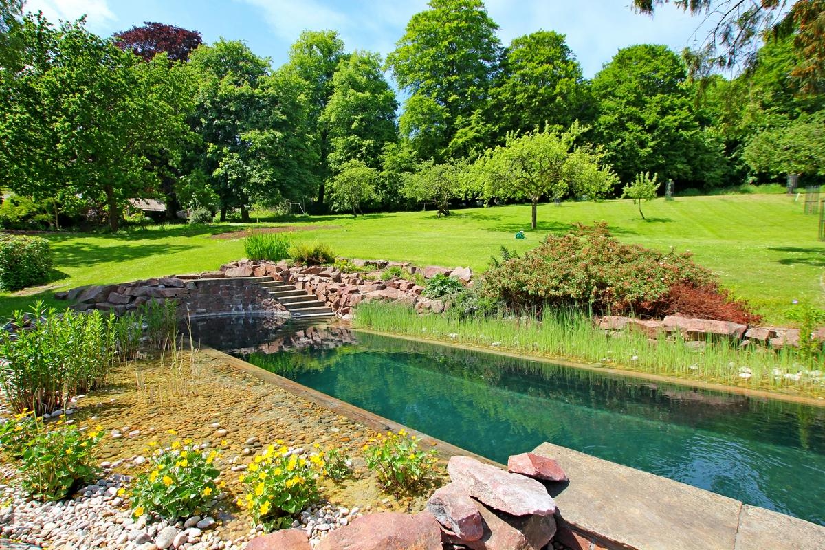 Outdoor natural pool  Outdoor Natural Pools - Clear Water Revival Swimming Pool Builders