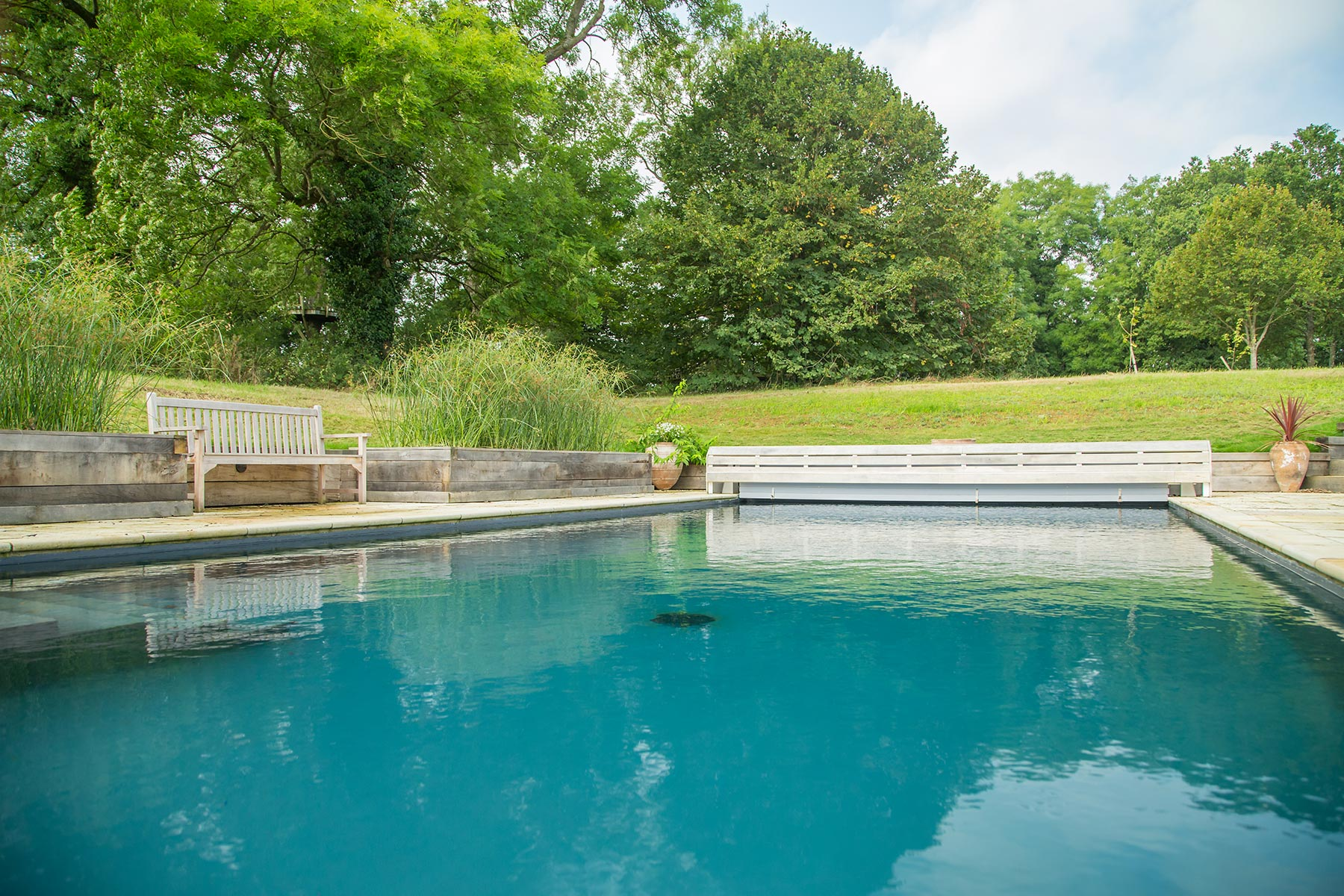 Swimming pool builders designers clear water revival Natural swimming pool builders