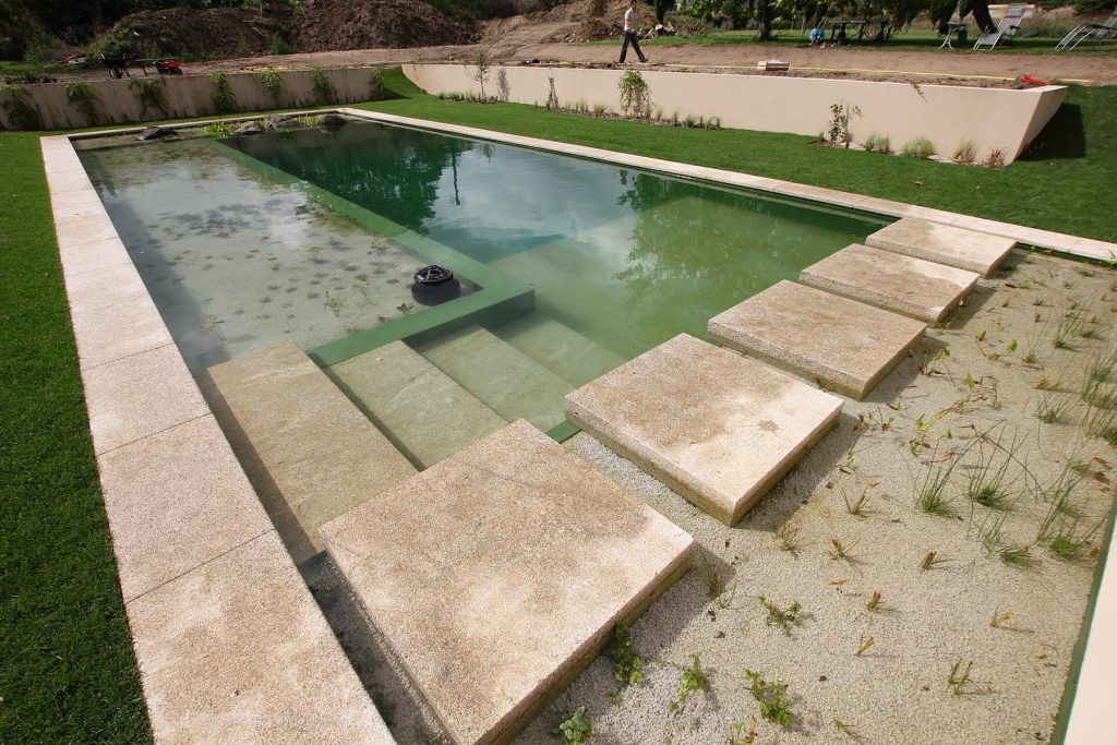 swimming ponds are much easier to maintain than regular swimming pools