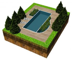 this natural swimming pool design is a thing of beauty