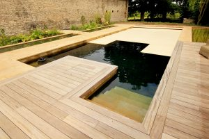 natural pool refurbishment